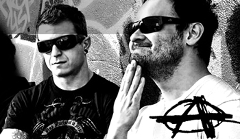 Anarchy Vert Sunglasses  anarchy wayfarer sunglasses k grind vert