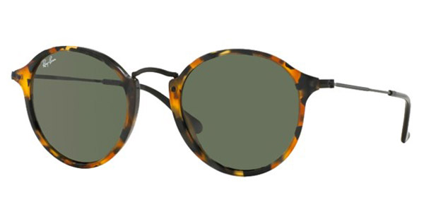 Ray-Ban  RB 2447 Sunglasses